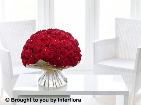 Ultimate 100 Luxury Rose Hand Tied